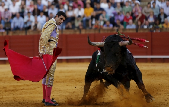 eu-vote-bullfighting