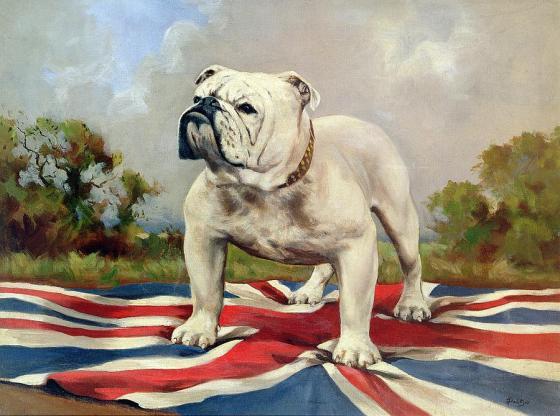 british-bulldog-english-school